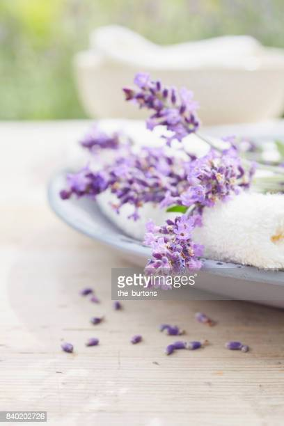Still life of a plate with lavender and towel
