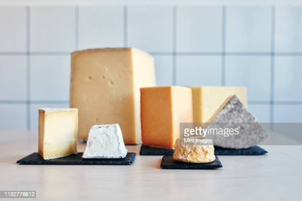 still life of a range of cheeses on table top - cheese stock pictures, royalty-free photos & images