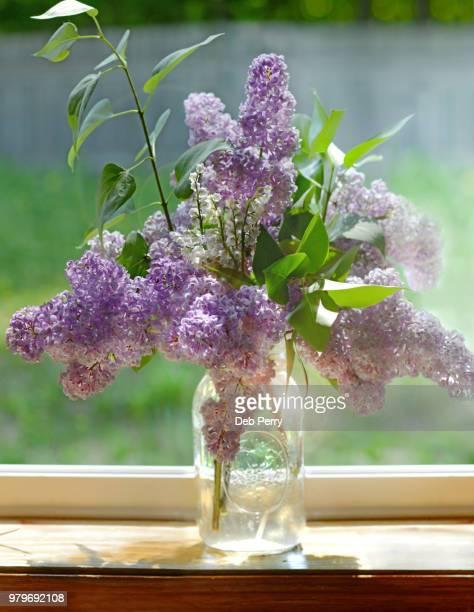 Still life of a vase of lilacs