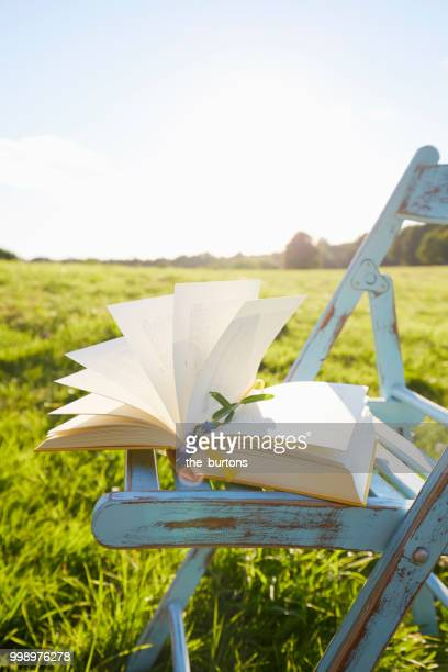 Still life of an open book and chair on meadow