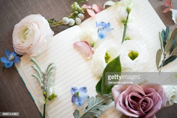 Still life of blank open note book with pastel colour flower heads and stems, overhead view