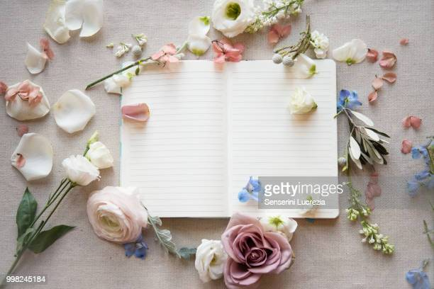 Still life of blank open note book with pastel colour flower heads, petals and stems, overhead view