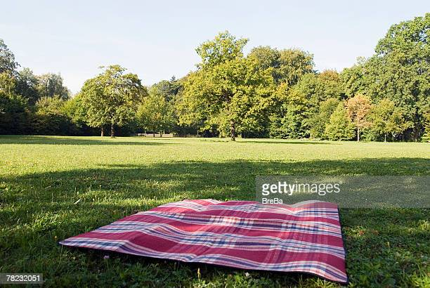 still life of blanket lying on grass in park - picnic blanket stock pictures, royalty-free photos & images