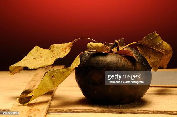 Still life of dried apple