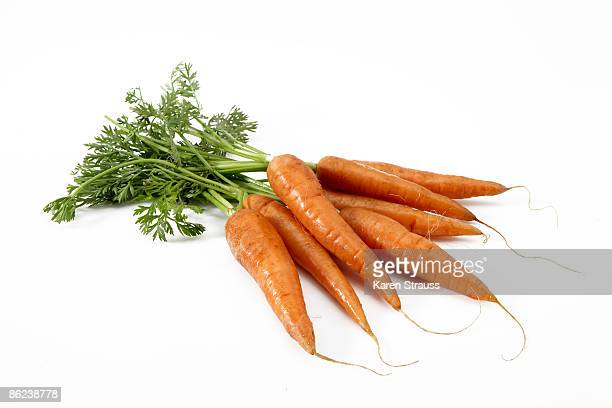 Still life of fresh carrots