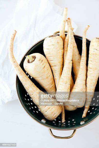 Still life of fresh parsnips in a colander