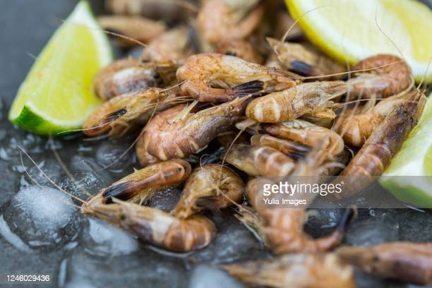 still life of fresh raw shrimp seafood on gray surface - noordzee stockfoto's en -beelden