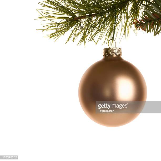 Still life of gold Christmas ornament hanging from pine branch.
