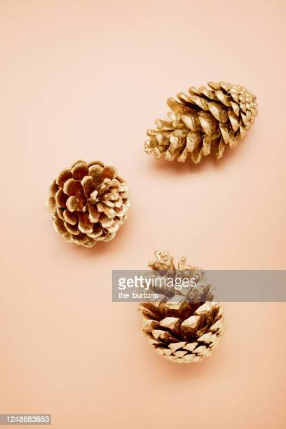 still life of gold colored fir cones on brown background - pinecone stock pictures, royalty-free photos & images