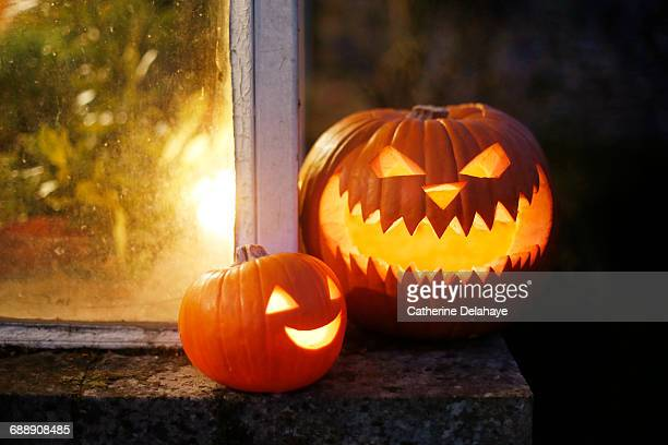 still life of halloween pumpkins - halloween decoration stock pictures, royalty-free photos & images