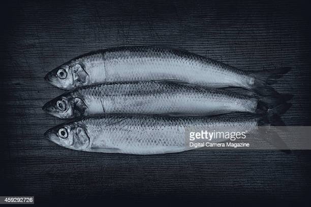 Still life of herring on a wooden chopping board taken on April 13 2014