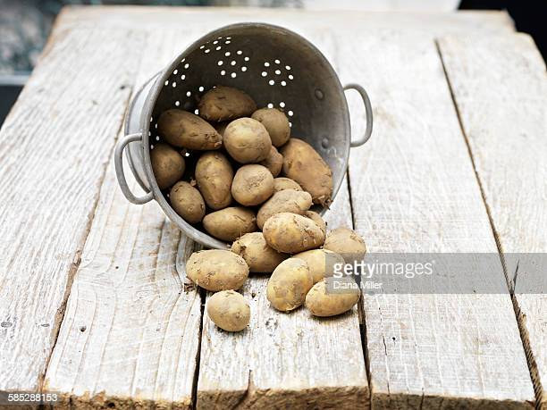 Still life of Jersey Royal Potatoes in colander on wooden table