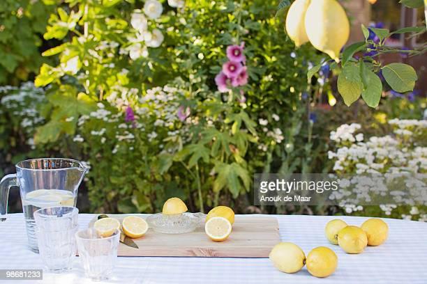 still life of lemons and lemonade jar.