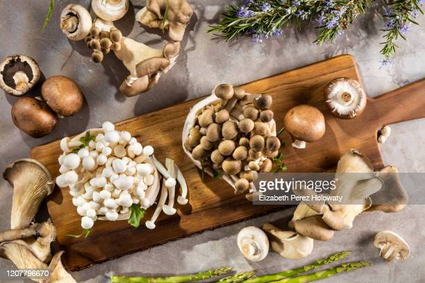 still life of natural mushrooms - mushrooms stock pictures, royalty-free photos & images