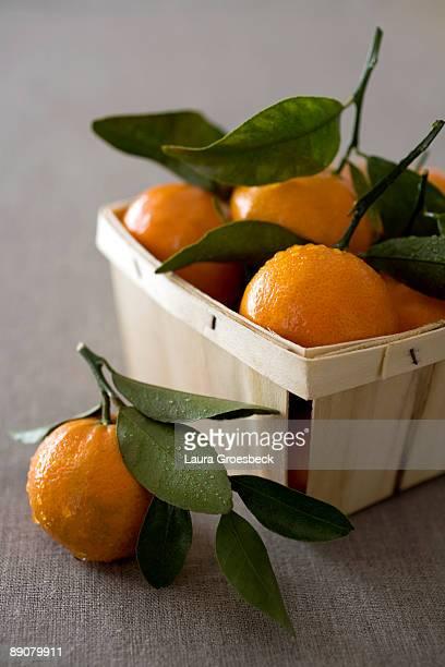 Still life of oranges in basket