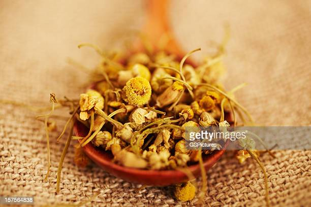 Still Life of organic chamomile in wood spoon