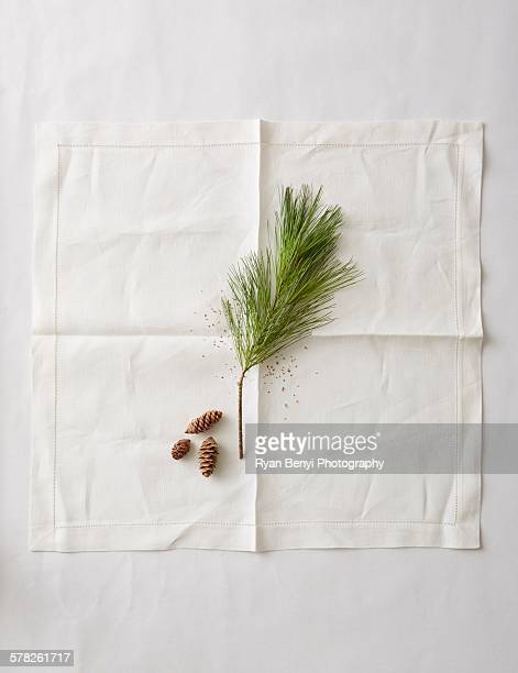 Still life of pine needles and small pine cones on napkin