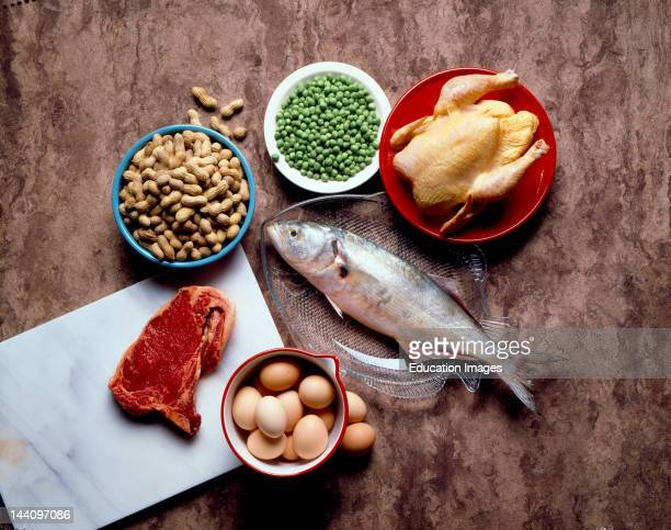 Still Life Of Protein Foods
