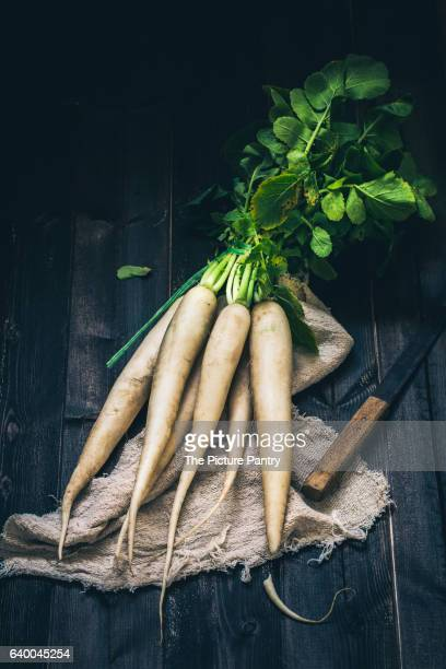 still life of radishes - dikon radish stock photos and pictures