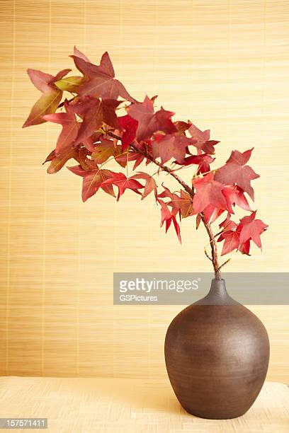 still life of red maple leaves in vase - japanese maple stock pictures, royalty-free photos & images
