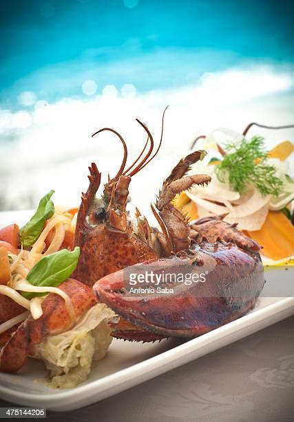 Still life of seafood platter with basil and dill garnish