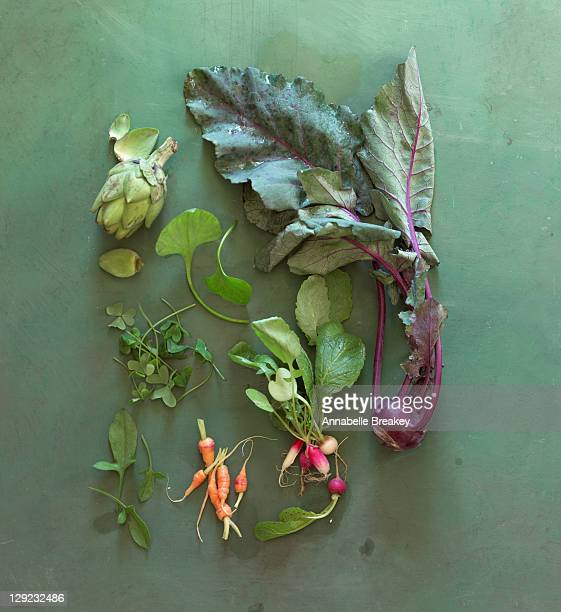 Still life of spring vegetables