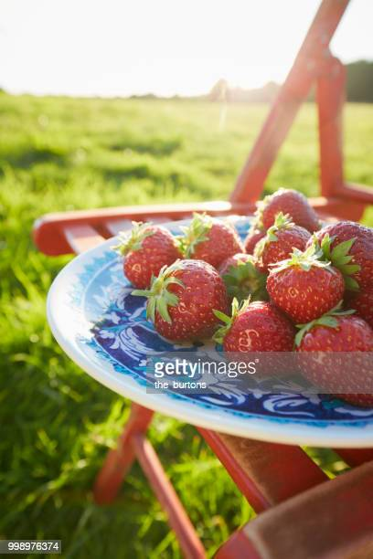Still life of strawberries on a plate and chair on meadow