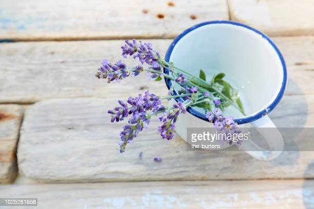Still life of twigs of lavender in enamel cup on wooden table