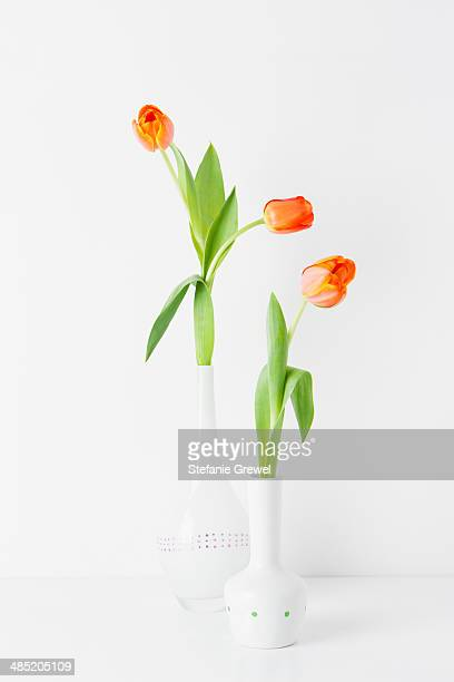 Still life of two vases and orange tulips