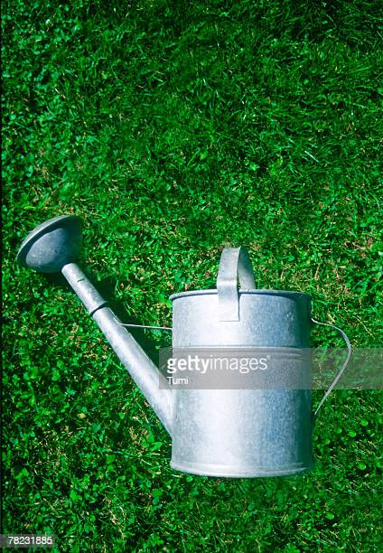 still life of watering can lying on grass