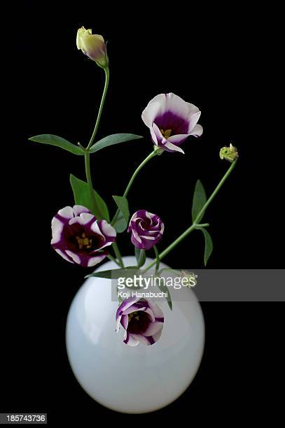 Still life of white vase with purple flowers