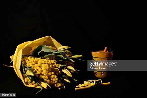 still life - mimose foto e immagini stock