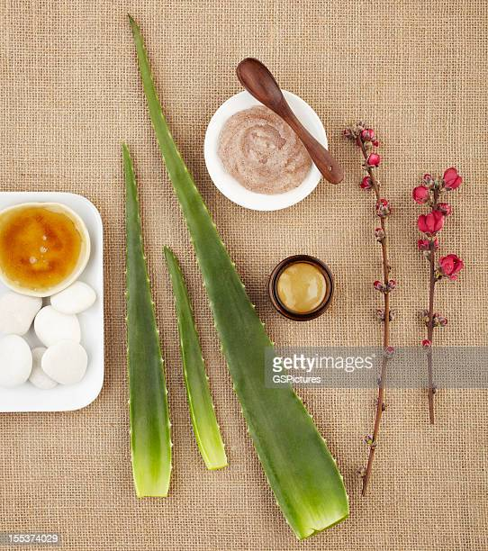 Still life with aloe vera, honey, sugar scrub and flower