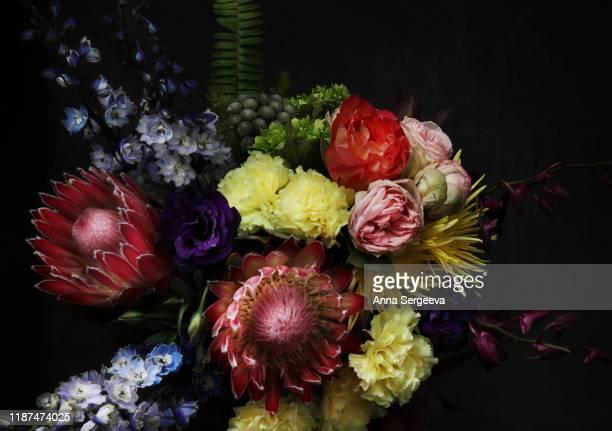 暗い背景に花を持つ静物 - purple roses bouquet ストックフォトと画像