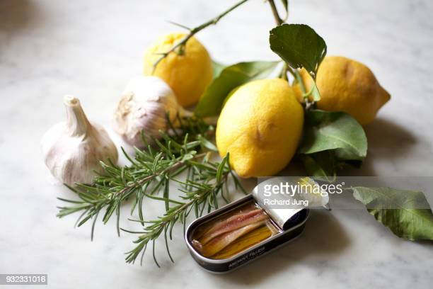 Still life with lemons, garlic, rosemary and anchovies on marble surface