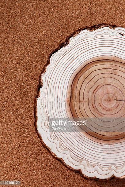 still life,stump,close up,tree rings