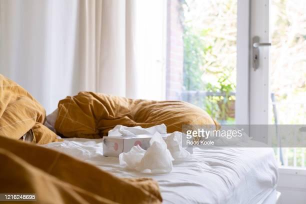 still of a bed - ティッシュ ストックフォトと画像