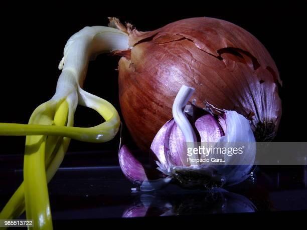 Still Onion and Garlic Life