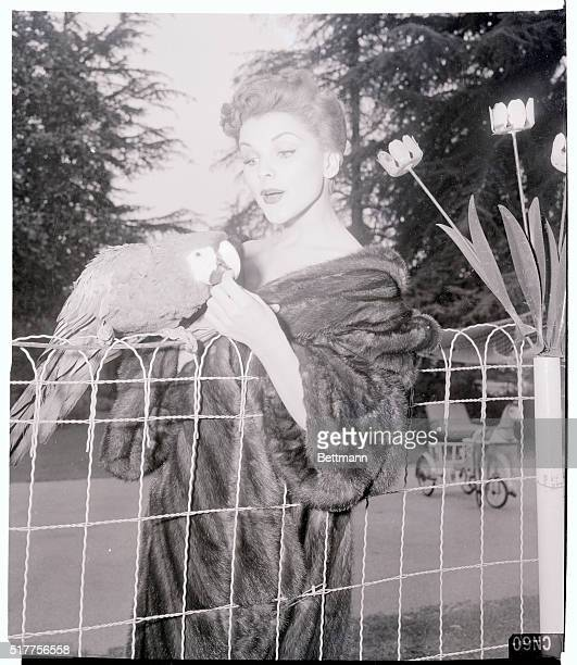 Still wearing her gorgeous mink coat Debra stops to play with Caesar her favorite parrot She claims the bird once had polio and was nursed back to...