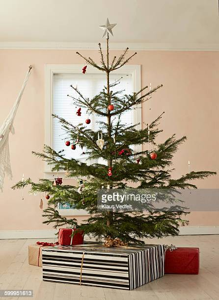 Still-life of christmas tree with presents