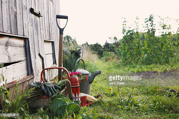 still-life of gardening objects by shed - gardening equipment stock pictures, royalty-free photos & images