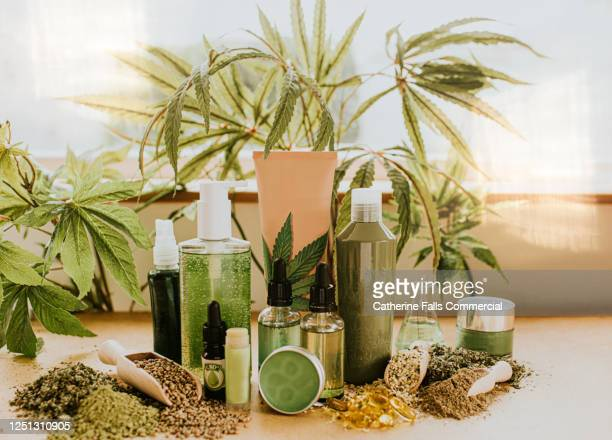 still-life selection of cbd products, conveying vast possibilities of cannabis as an ingredient in an alternative therapies, lifestyle and treatments. - cbd oil stock pictures, royalty-free photos & images
