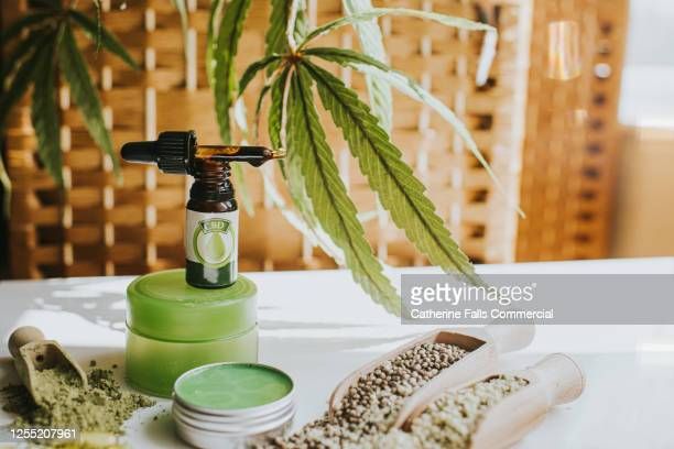 still-life selection of cbd products, conveying vast possibilities of cannabis as an ingredient in an alternative therapies, lifestyle and treatments. - カンナビスサティバ ストックフォトと画像