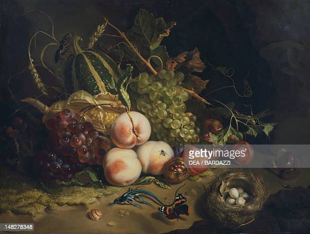 StillLife with Fruit and Insects by Rachel Ruysch oil on panel 44x60 cm Florence Galleria Degli Uffizi