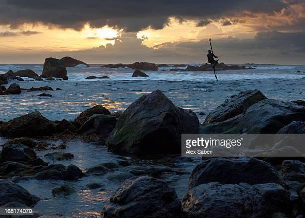 a stilt fisherman at sunset. - alex saberi 個照片及圖片檔