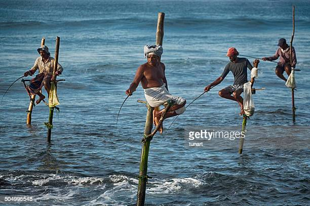 Stilt Fishermen in Weligama, Sri Lanka