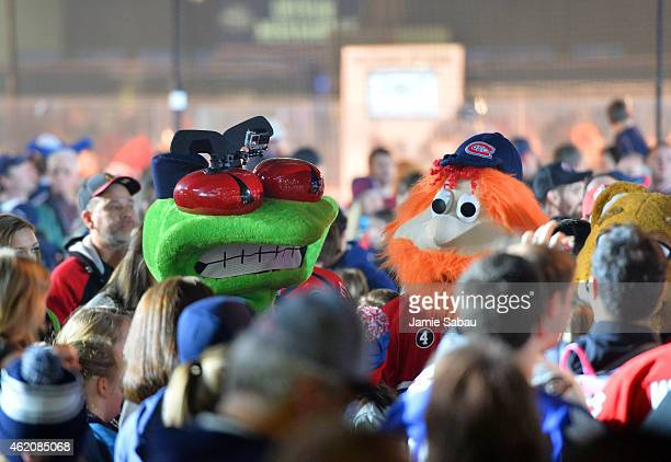 Stinger of the Columbus Blue Jackets and Youppi of the Montreal Canadiens make their way through the crowd and walk toward the rink during the mascot...