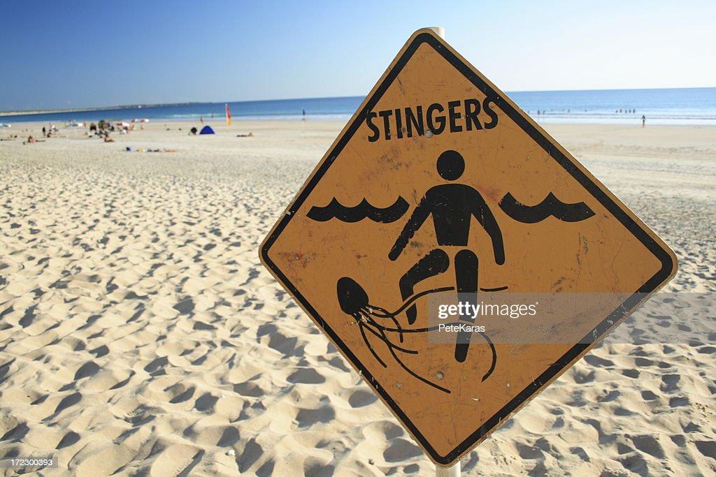 Stingers : Stock Photo