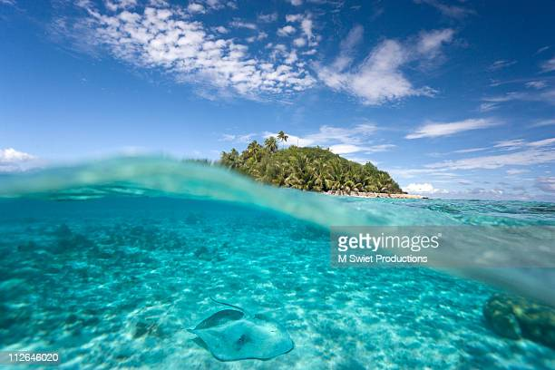 stingray island split view - pacific islands stock pictures, royalty-free photos & images