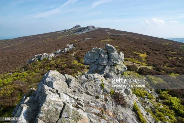 stiperstones national nature reserve, shropshire, england - ridge stock pictures, royalty-free photos & images